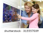 Stock photo mother and daughter choosing goldfish in pet store 315557039