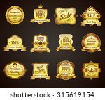 golden crown highest quality... | Shutterstock . vector #315619154