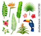 tropical gardens  leaves and... | Shutterstock . vector #315619730