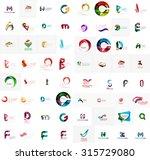vector abstract company logo...   Shutterstock .eps vector #315729080