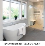 bathtub and shower in new... | Shutterstock . vector #315797654