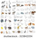 vector illustration of a... | Shutterstock .eps vector #315842354