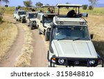 serengeti   tanzania  ...   Shutterstock . vector #315848810