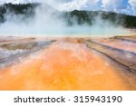 colourful bacteria at the grand ... | Shutterstock . vector #315943190