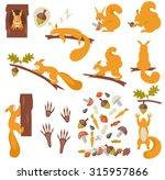 Set Of Squirrels Cartoon....