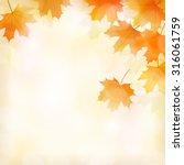 fall leaves background | Shutterstock .eps vector #316061759