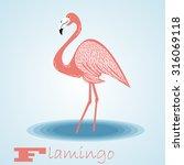 flamingo.vector | Shutterstock .eps vector #316069118