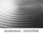 circle plate   Shutterstock . vector #316145960