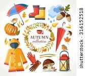 autumn symbols collection | Shutterstock .eps vector #316152518
