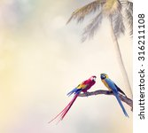 two parrots perch on a log | Shutterstock . vector #316211108
