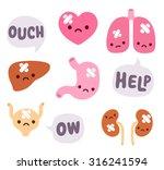 set of cute cartoon internal... | Shutterstock .eps vector #316241594