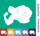 muscle icon set template | Shutterstock .eps vector #316254020