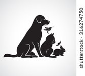 vector group of pets   dog  cat ... | Shutterstock .eps vector #316274750