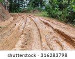 wheel closeup in a countryside... | Shutterstock . vector #316283798