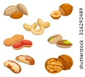 set of nuts | Shutterstock .eps vector #316292489