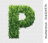 alphabet p of green grass. a... | Shutterstock .eps vector #316324574