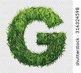 alphabet g of green grass. a... | Shutterstock .eps vector #316324598