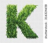 alphabet k of green grass. a... | Shutterstock .eps vector #316324658