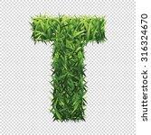 alphabet t of green grass. a... | Shutterstock .eps vector #316324670