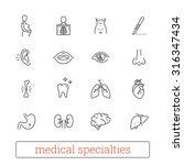 medicine specialties thin line... | Shutterstock .eps vector #316347434