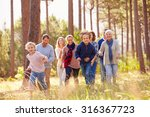 multi generation family walking ... | Shutterstock . vector #316367723