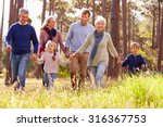 happy multi generation family... | Shutterstock . vector #316367753