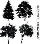 illustration with trees... | Shutterstock . vector #31637248