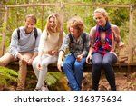 parents and teens playing ... | Shutterstock . vector #316375634