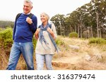 senior couple walking together... | Shutterstock . vector #316379474