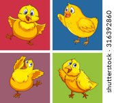 little chick in four squares... | Shutterstock .eps vector #316392860