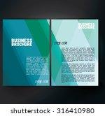 vector brochure template design ... | Shutterstock .eps vector #316410980
