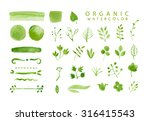 organic  bio  natural design...   Shutterstock . vector #316415543