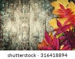 Autumn Background Autumn Leave...