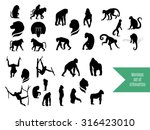 the big vector set of wild... | Shutterstock .eps vector #316423010