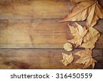 Top View Image Of Autumn Leave...