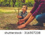 Stock photo when will it grow curious little boy helping his father to plant the tree while working together 316507238