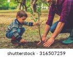 let me help you  little boy... | Shutterstock . vector #316507259