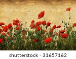 vintage background with poppy flowers - stock photo