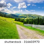 composite landscape with fence near the path through meadow up the hillside to coniferous forest  on the mountain. - stock photo