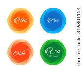 beautiful colorful round shapes ... | Shutterstock .eps vector #316801154