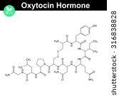 oxytocin peptide hormone 2d... | Shutterstock .eps vector #316838828