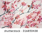branches of cherry blossoms.... | Shutterstock . vector #316850438