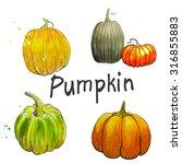set watercolor pumpkin | Shutterstock . vector #316855883