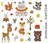 Woodland Animals In Autumn Tim...