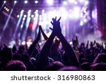 audience with hands raised at a ... | Shutterstock . vector #316980863