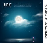 night nature background  cloudy ... | Shutterstock .eps vector #316986173