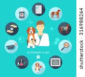 veterinary flat icon set.... | Shutterstock .eps vector #316988264
