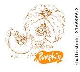 hand drawn sketch of pumpkin... | Shutterstock .eps vector #316989953
