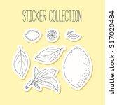 lemonade sticker collection... | Shutterstock .eps vector #317020484