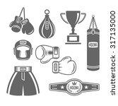 set of boxing equipment vector...   Shutterstock .eps vector #317135000